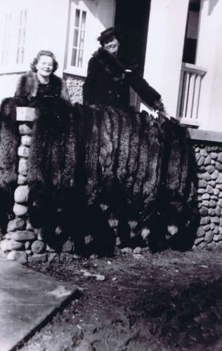Silver foxes raised by Ida and Henry Tatum displayed at the entrance to the Lac La Biche Inn, 1945